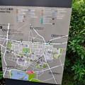 Photos: 上野DSC_0026_025