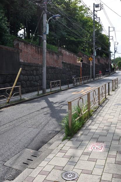 上野DSC_0027_026