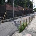 Photos: 上野DSC_0027_026