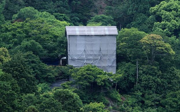 Photos: 嵐山47