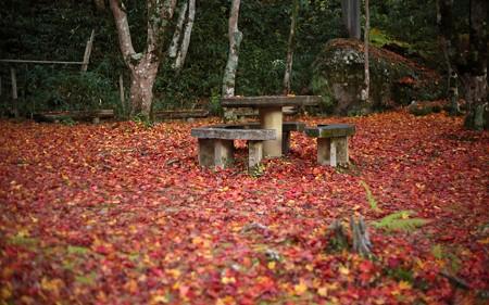 笠置山自然公園57