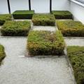 Photos: 東福寺・方丈庭園08