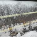 Photos: 車窓から