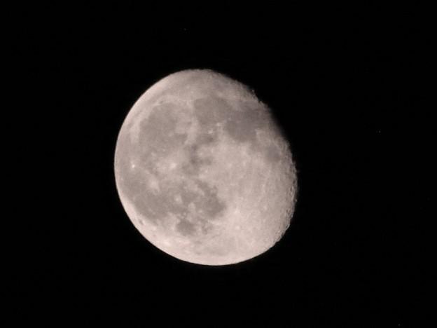 写真: 仕事帰りに見る月は悲しい