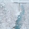Photos: 真冬の北海道美瑛
