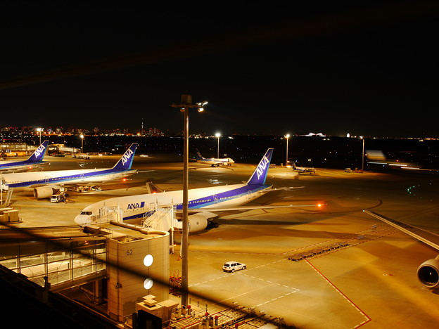 Photos: 暖かな飛行場