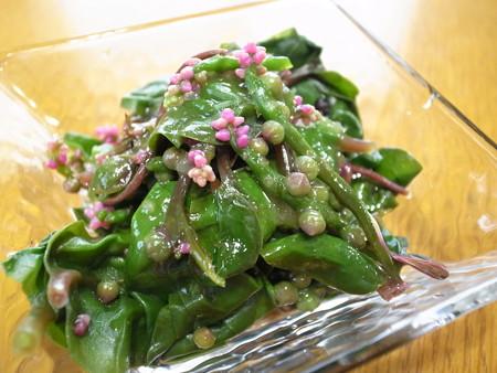 つるむらさきを使った人気レシピ【料理の種類:ご …