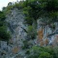 Photos: 箕面の崖