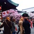祇園歌舞練場