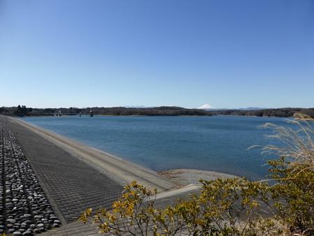 狭山湖と富士山とムーミンの家
