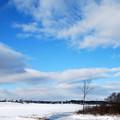 Winter Sky 12-31-12
