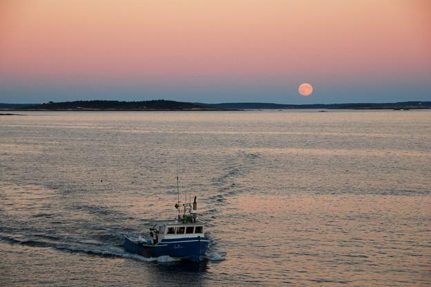 写真: A Lobster Boat and Harvest Moon 9-19-13