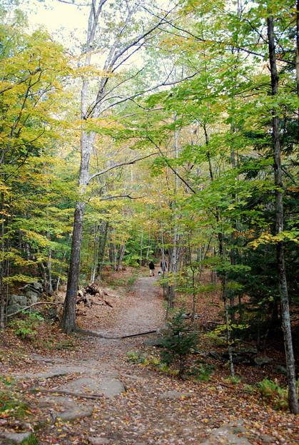 At North Loop Trail 10-11-13