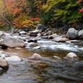 Photos: Upstream 10-12-13