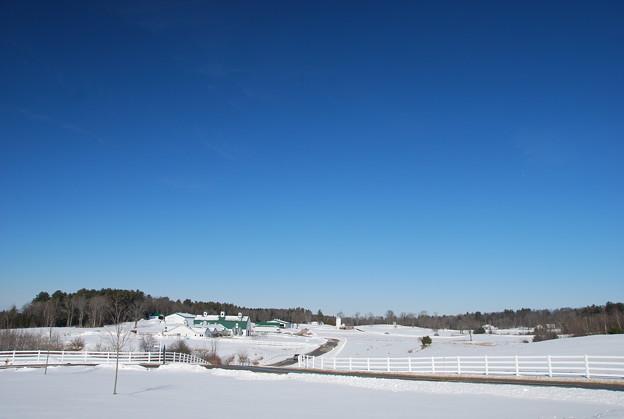 Photos: Pineland Farm 2-8-14