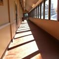 写真: Lines 3-9-14