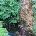 Photos: 川浦渓谷