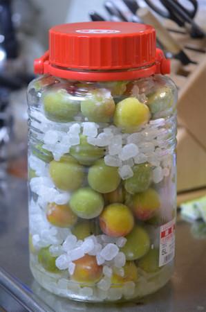 梅シロップ5L瓶