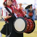 2013まるごみJAPAN&浦安フェスティバル