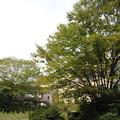 蟹江高校 (30) 2013年 9月
