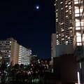 月夜の都会