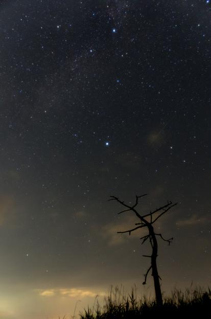 ベガ、デネブとペルセウス座流星群