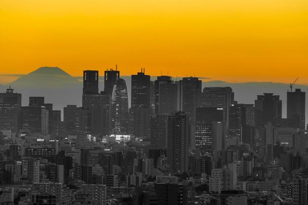 写真: 灰色の都会(まち)