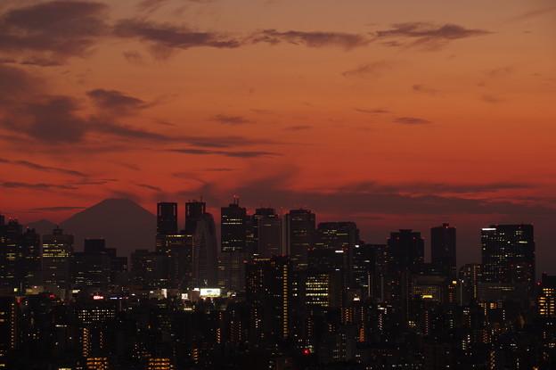 Dusk of Tokyo