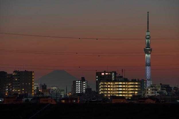 灯の入ったスカイツリーと富士山