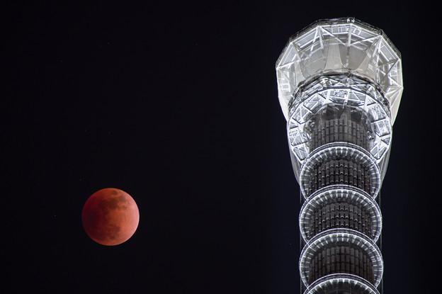 2018年1月31日の皆既月食