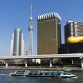 Photos: 隅田川を下るホタルナ