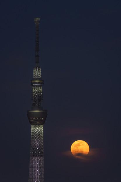春分の日の満月