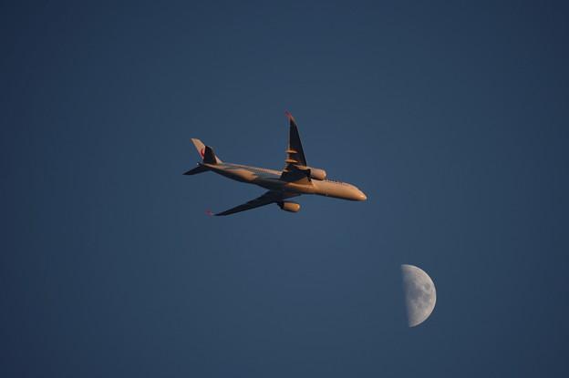 夕陽を浴びて飛ぶ飛行機と上弦の月