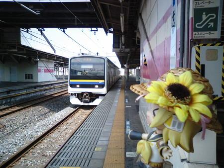 ではでは、蘇我駅を出発・終着点として、内房外房を一周します!! ...