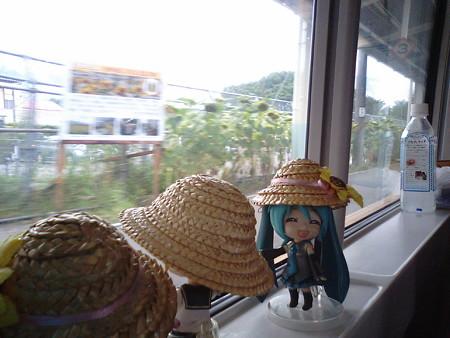 富士見駅に停車。 ミク:「JR中央本線の最高標高地点です。約950mく...
