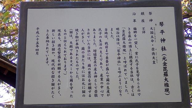 131130 琴平神社沿革