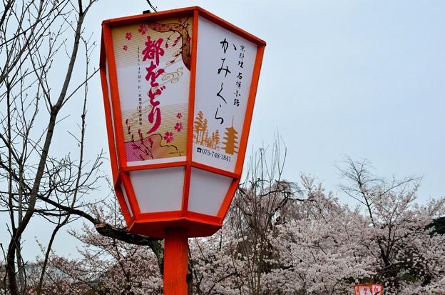 2013_0330_161657_S 円山公園