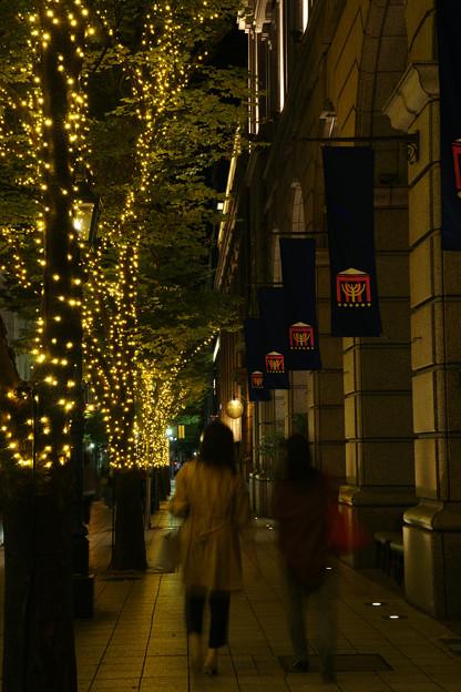 Photos: 神戸大丸 光の並木道_02