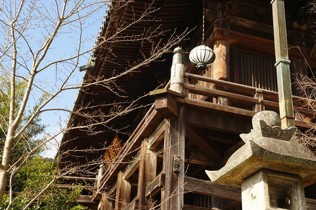 長谷寺 登廊からの本堂