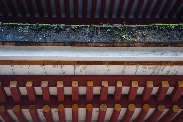 室生寺 五重塔の檜皮葺