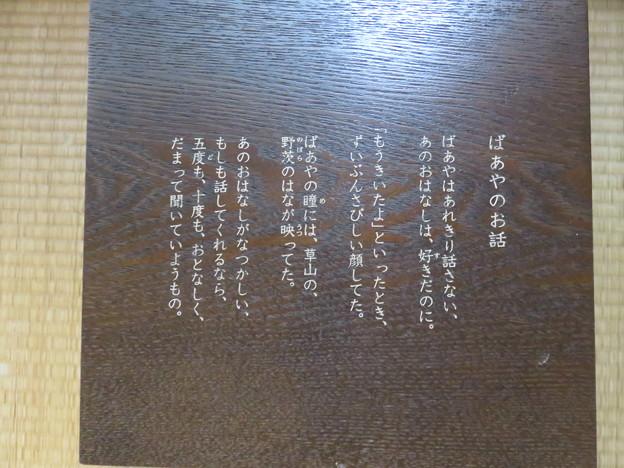 金子みすゞ記念館 館内_04