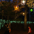 Photos: 森林植物園 ランターン_03