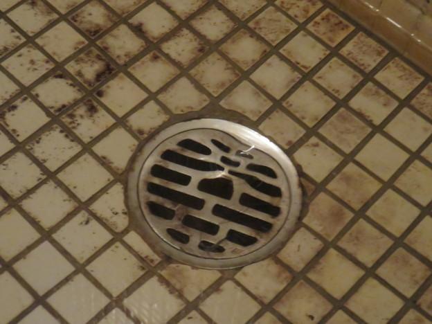 風呂の排水溝の排水_01