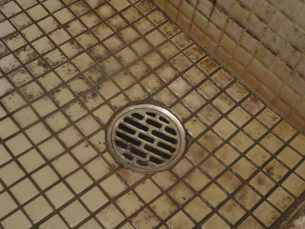 風呂の排水溝の排水_02