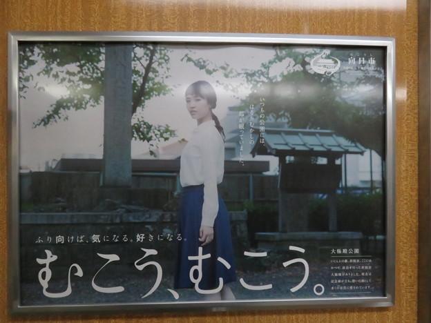 Photos: むこうむこう_01