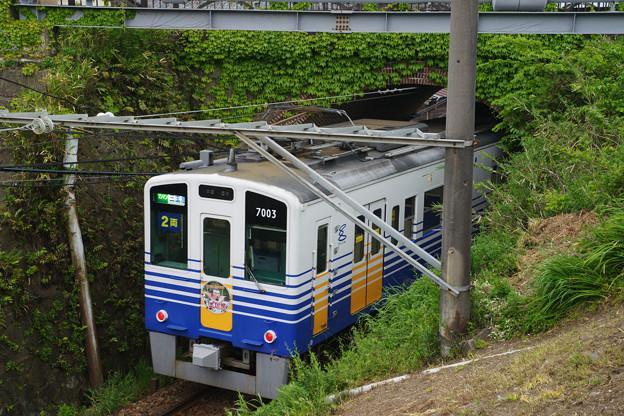 眼鏡橋をくぐる電車_02