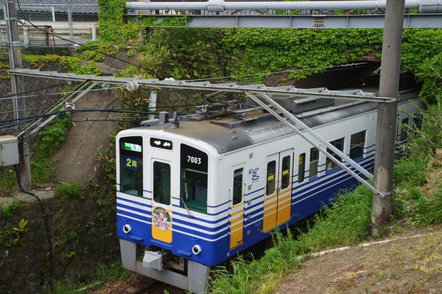 眼鏡橋をくぐる電車_03