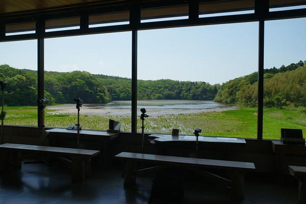 鴨池観察館 館内からの眺め