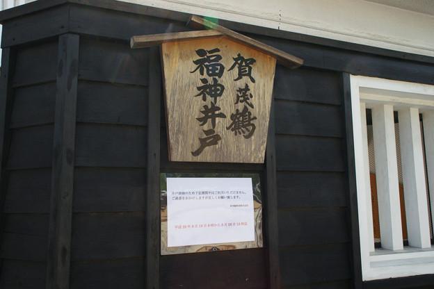 福神井戸_02