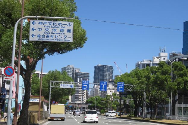 道路標識 神戸文化ホールへ